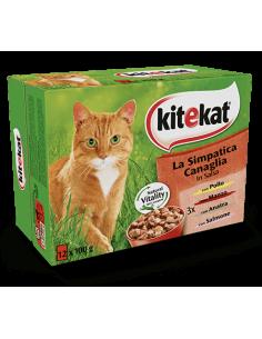 Kitekat Multipack Simpatica Canaglia in Salsa 12 x 100 g Cibo Umido per Gatti